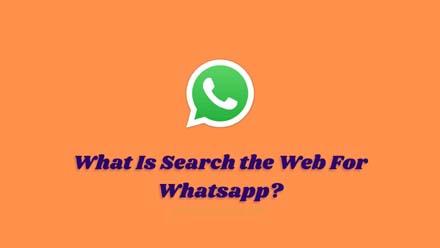 Search the Web
